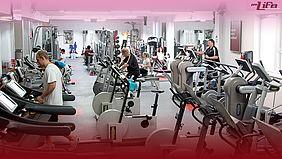 prolife-fitness.at